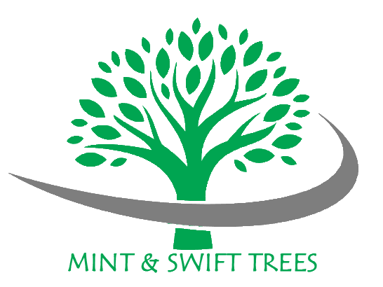 Mint and Swift Trees